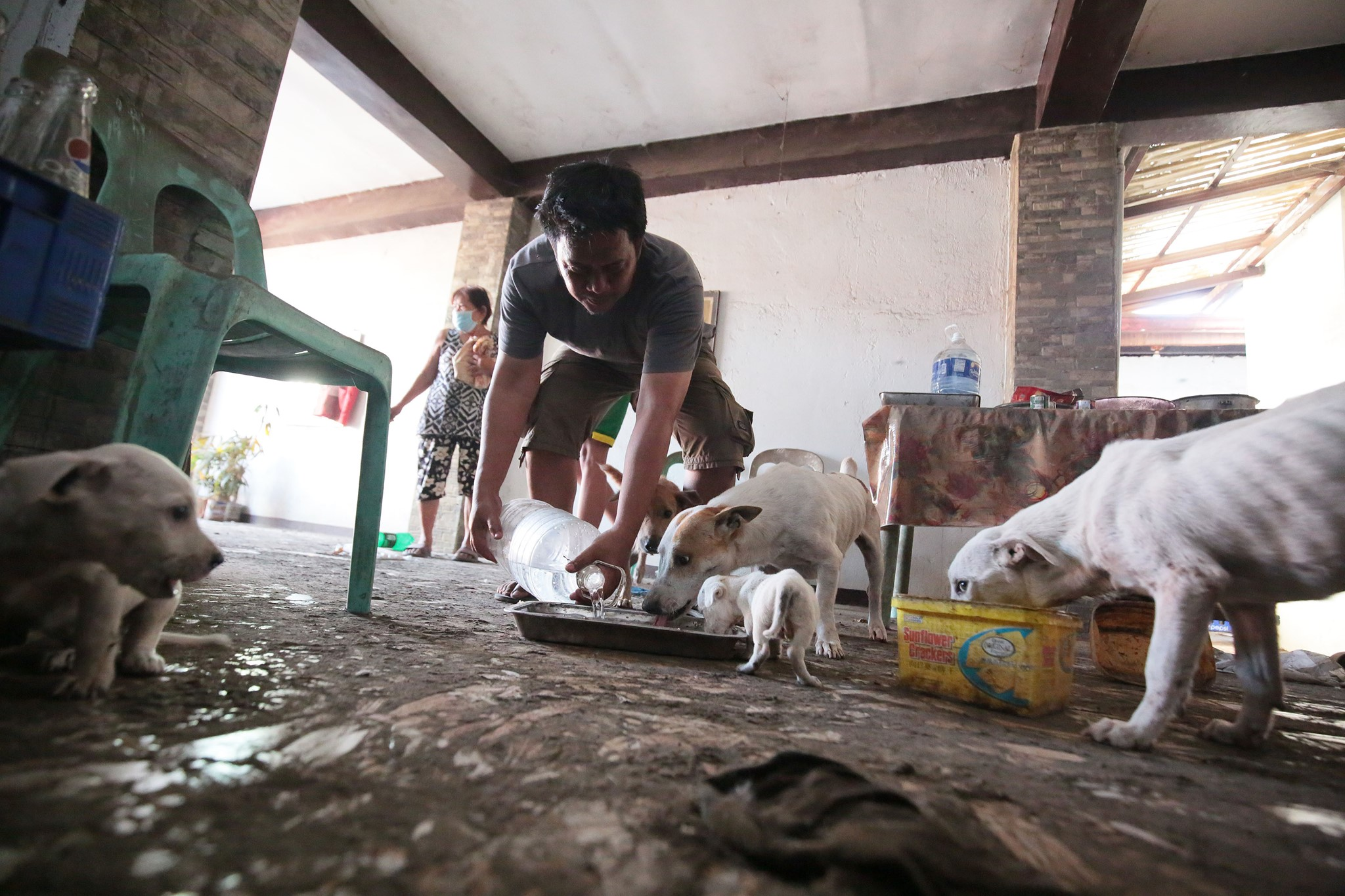 Manny Arandia feeds his dog after the lockdown was lifted in Lemery, Batangas two weeks following Taal Volcano's eruption. Phivolcs lowered the volcano's alert level to 3 on Sunday morning, January 26.